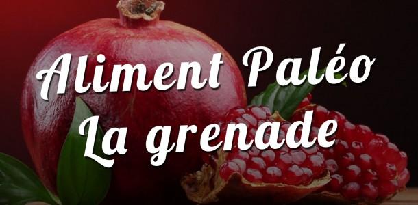 Aliment Paléo : La grenade
